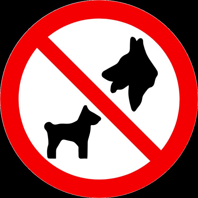 Husdjur tillåts inte