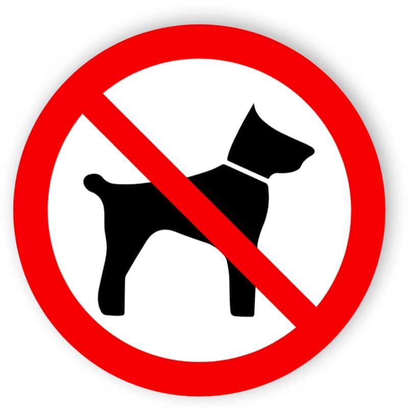 Mitführen von Tieren verboten