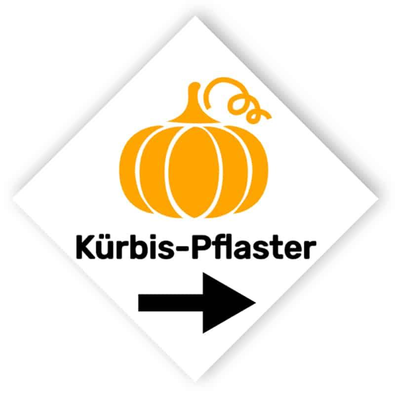 Kürbis-Pflaster Zeicher